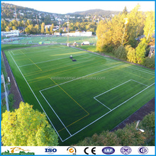 TenCate 50mm Cost Effective Football Artificial soccer grass pitch