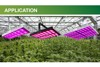 Hot Promotion!1500w led grow light of full spectrum to replace 3000W hps grow light for greenhouse and herb plant