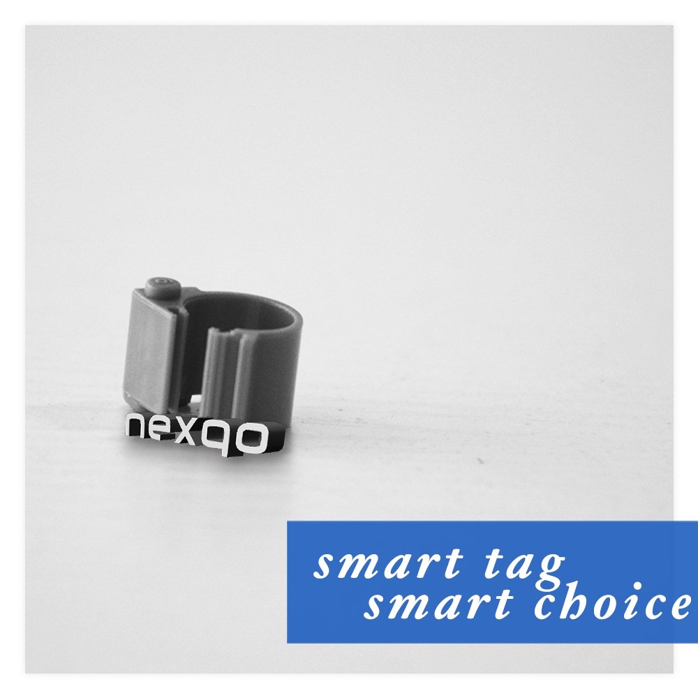 LF rfid/nfc tag Hitags256 animal tracking pigeon ring foot ring tag