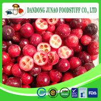 Frozen fruits high quality frozen fresh cranberry prices