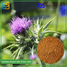 GMP factory water soluble silymarin milk thistle extract