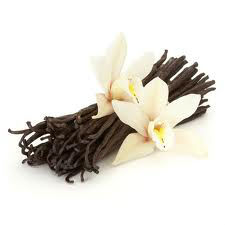 Vanilla Pods/Beans from East Africa, Indian Ocean