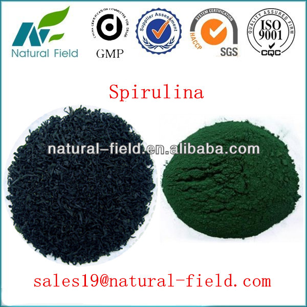 spirulina manufacturer with competitive price ISO and HACCP