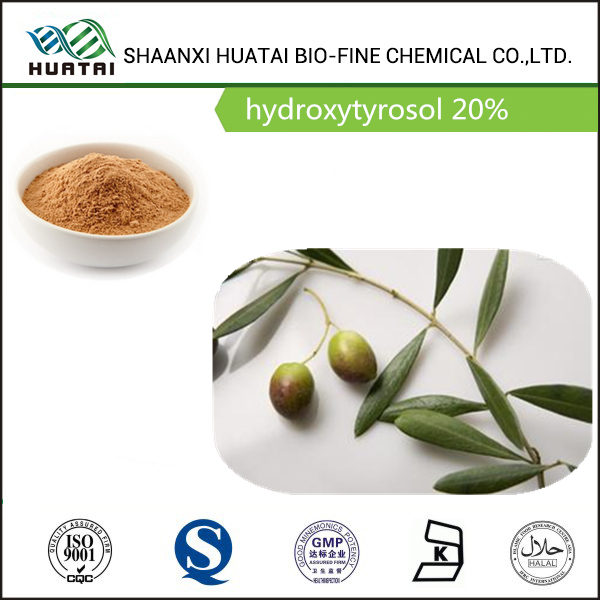 olive tree extract Phenolic phytochemicals hydroxytyrosol 20% powder