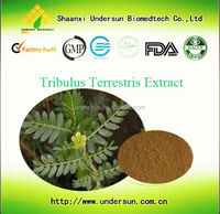 Men health Protodioscin/ Saponins /tribulus terrestris capsules/ High Quality Power Plus Capsule