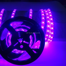China supplier waterproof 6500k 5050 smd led strip light 12V 24 volt 14.4w/m led strip