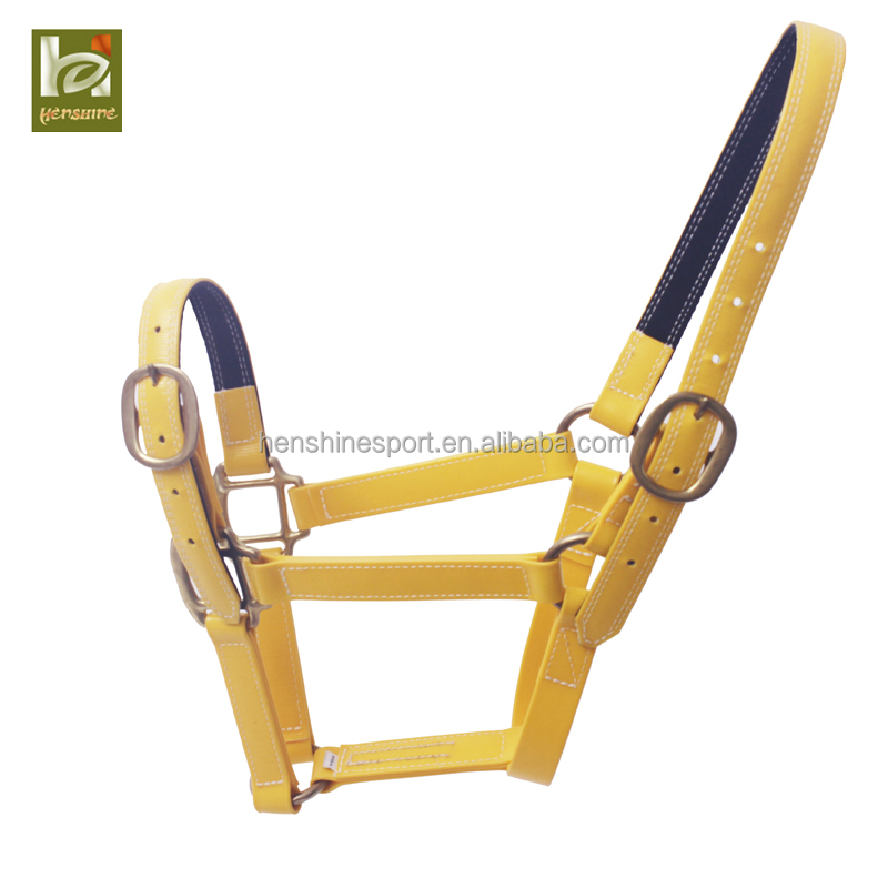 Hot sale high quality waterproof horse halter with custom design