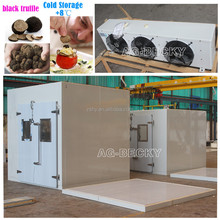 Black truffle cold storage with copeland condensing unit