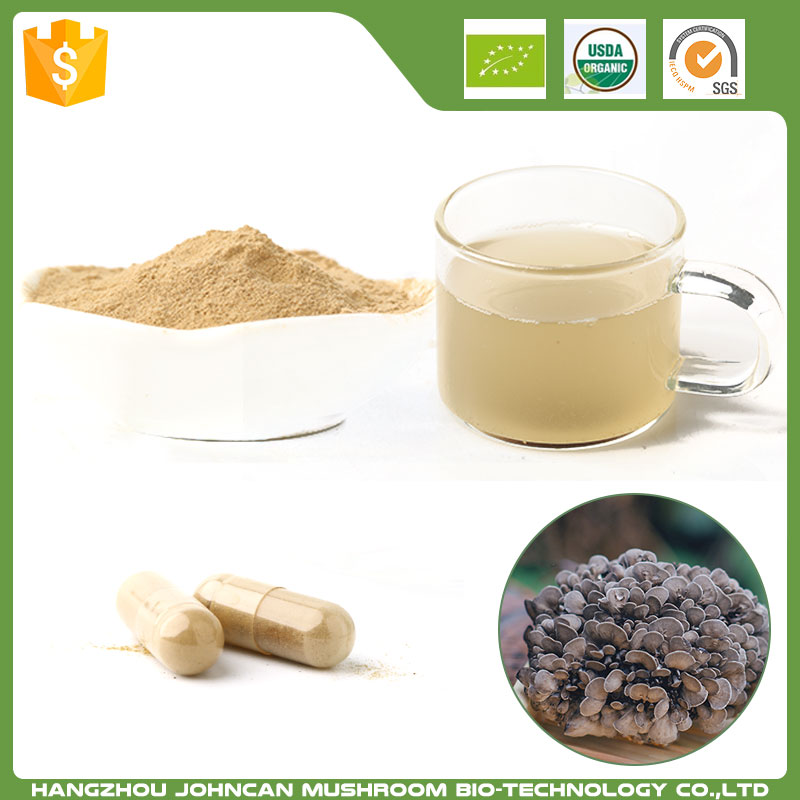 Herbal Medicine Natural organic maitake mushroom extract