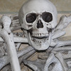 X-MERRY bag of bones 28pcs skeleton bones in a mash bag plastic bones Halloween decoration