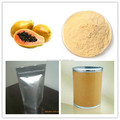 high quality Papaya Powder factory direct sale and good price