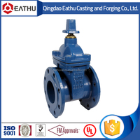 China cast iron resilient seat NRS gate valve