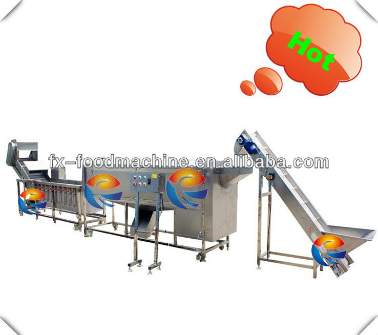 ginger washing cleaning peeling skinning blanching strilizing cutting slicing stripping production processing line