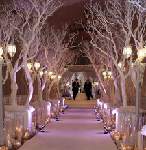Indoor Ceremony Decoration Artificial Dry Tree Branch / Artificial Tree Branches
