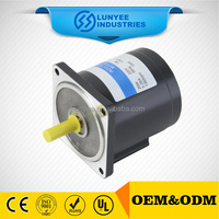 100% Copper Wire Three Phase AC induction Gear Motor
