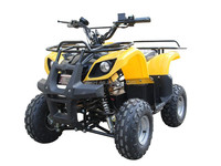 800W 48V 4 Wheel Adult Electric Quad Bike
