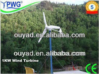 24v/48v 1kw wind turbine permanent magnet generator home use