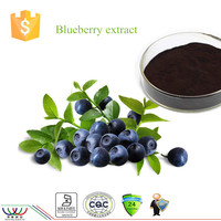Natural protect eyesight Blueberry extract with 15% HPLC 25% UV anthocyanin