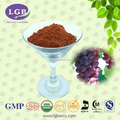 100% natural Grape Seed Extract Powder