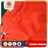 Strong Quality Flexible Pe Tarpaulin Woven Fabric Plastic Sheet
