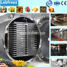 Food Freeze Dryer - Production Fruit Lyophilizer