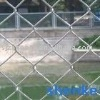 galvanzied chain link fence,pvc chain link fence