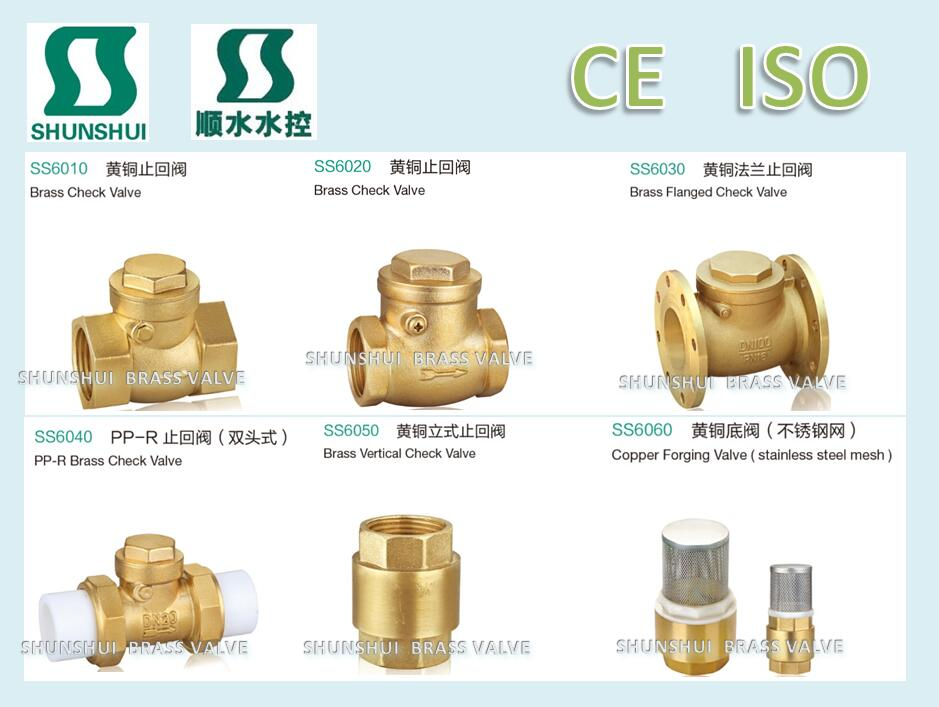 DN50/PN16 brass swing check valve