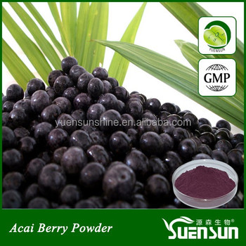 GMP factoty acai berry wholesale powder
