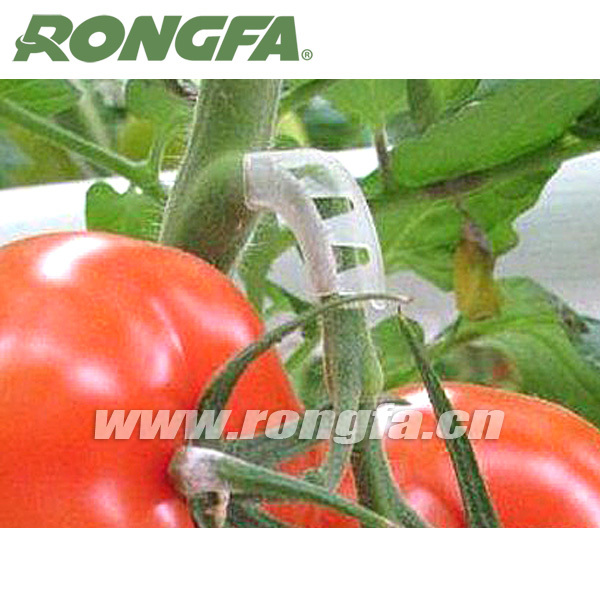 Cheap garden tools tomato truss arch clips buy tomato for Affordable garden tools