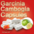 Health Care Products Garcinia Cambogia Capsules for Weight Loss