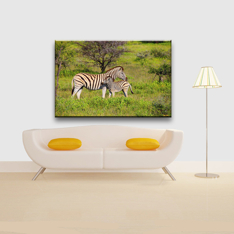 Zebra animal home decorate wall canvas painting designs for living room