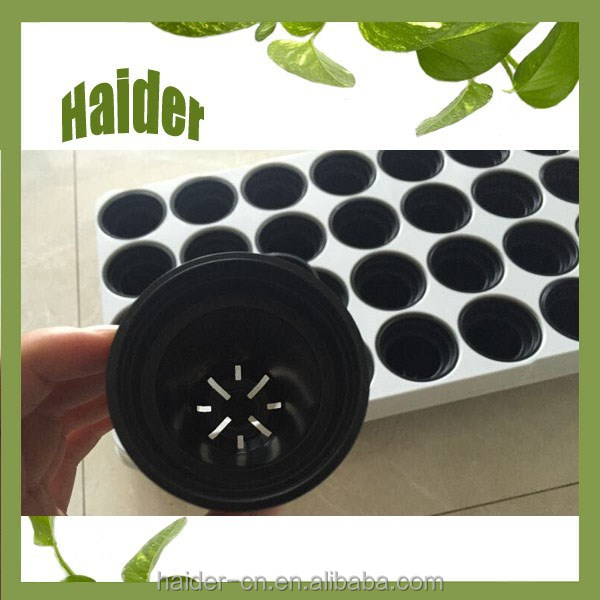 Hot high quality 28 hole white plastic PP separate seedling trays