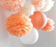 Tissue Paper Hanging Decorations 6 Tissue Paper Pom Poms plus 2 Paper Lantern Wedding / Birthday Party / Nursery Decor