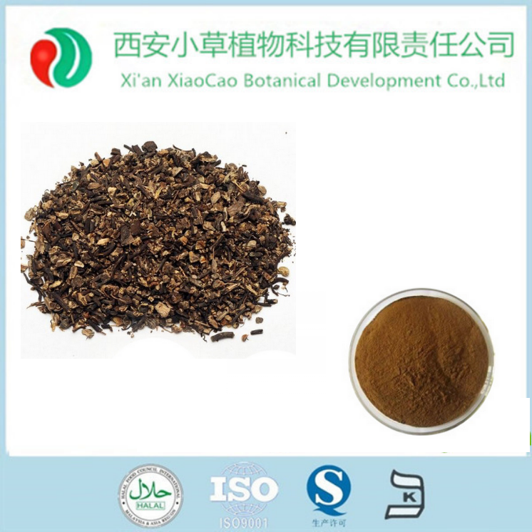 Black Cohosh Extract Powder/Black Cohosh Root Extract