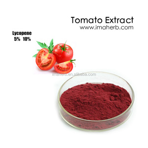GMP Manufacture Halal Approved lycopene powder price