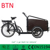 3 wheel electric bicycle adult tricycle/engin cargo tricycle with cabin