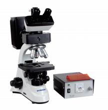 BIOBASE china cheap lab medical dental equipment Fluorescence Biological Microscope price for sale
