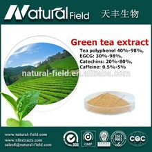 Strong guarantee for production Bulk price green tea extract capsules oem 95% polyphenols