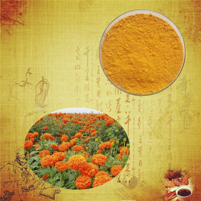 High quality and 100% natural lutein extract lutein oil marigold lutein eye drops