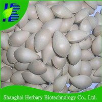 High quality hot tree seeds, ginkgo biloba seed for sowing