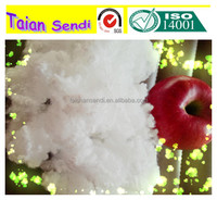Virgin Hollow conjugated polyester staple fiber for filling material