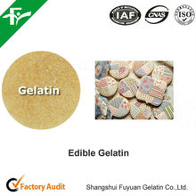 Hot Sale Halal Edible Gelatin Powder for Icings