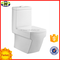 Sanitary Ware Washdown Luxury Squat Toilet