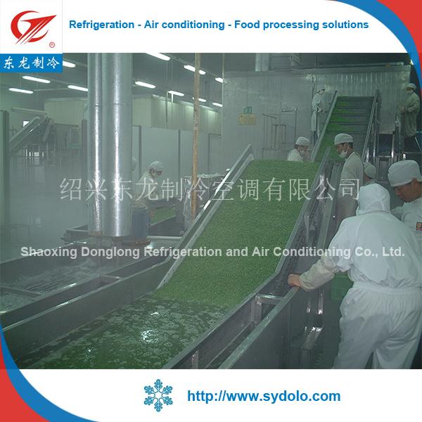industrial green peas vegetable and fruit quick freezing iqf tunnel blast freezer equipment machine for sale