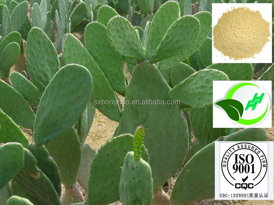 White kidney beans hindi