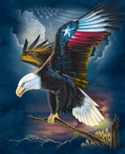 Flying beautiful 3d plastic eagle for decoration picture,3d plastic eagle with USA flag