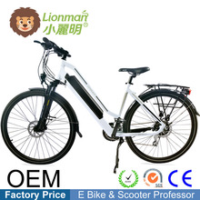 hot sale & high quality 36v 250w 24inch e-tricycle e bike