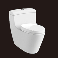 2106 High quality siphonic one piece toilet WC CHAOZHOU toilet sanitary ware