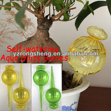 colorful plant Self-watering glass aqua globes