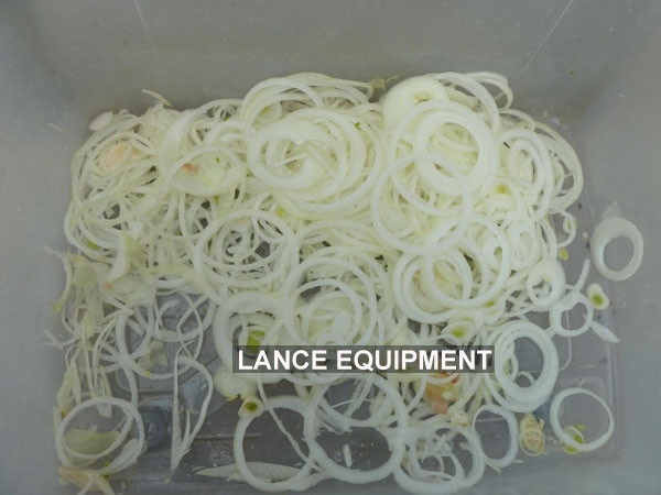 automatic onion chopper machine with operation video